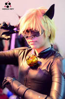 Chat Noir by Elliot-Baskerville
