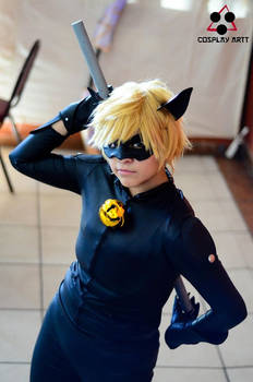 Chat Noir -Miraculous LadyBug