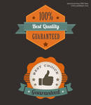 Colorful Premium Quality Web Badge (PSD)