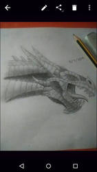 Dragon by Ghang