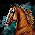 jamaicancactus by ibeany13
