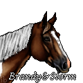 Stormy by ibeany13
