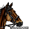 Miamouse by ibeany13