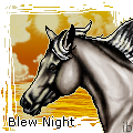 Blew Night by ibeany13