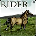 horseriderbydusk by ibeany13