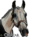 Chazar by ibeany13