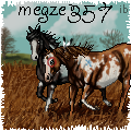 megze357 by ibeany13