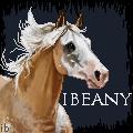 Overo Palomino by ibeany13