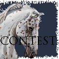 CONTEST by ibeany13