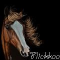 Flickkaa by ibeany13