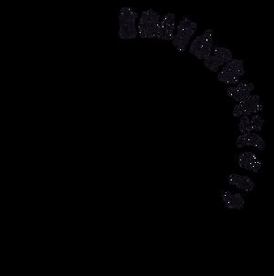 Alethiometer Symbols