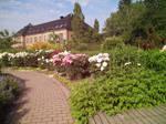 Oslo - Garden of Roses