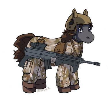Commission - Canterlot Republic Trooper