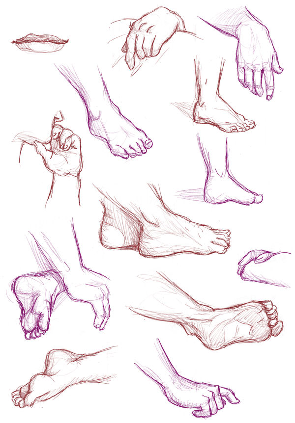 Hands and feet, March-April 2019