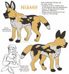 Good Dog reference sheet