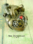 New Direction - Front