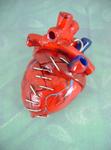 Bleeding Mending Heart - Back