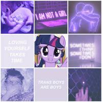 Transboy Twilight Sparkle Moodboard by S1NB0Y
