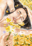 Fingon, in the field of buttercup, springtime. by bluesandsilver