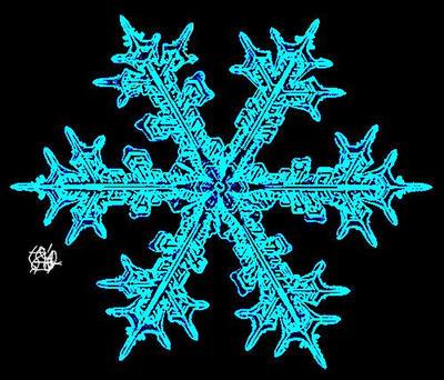 Snowflake {DD} by zetaSuceava