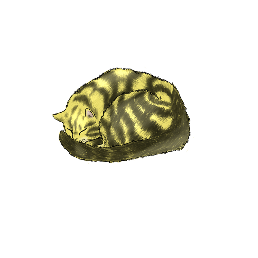 Kitty by tora-neko-san