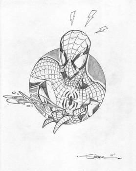 SpiderMan Circle Series