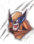 Wolverine Markers