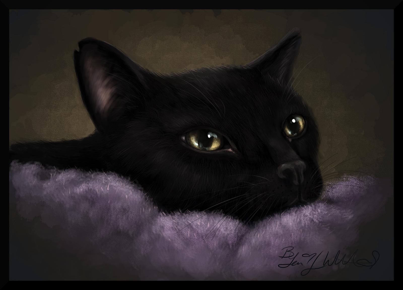 Blackbird Commission by pyro-helfier