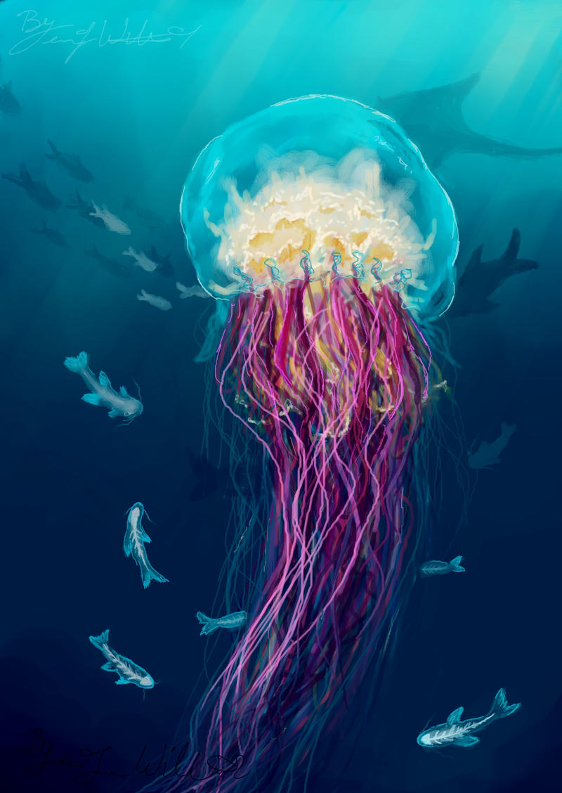 jellyfish by pyro helfier on deviantart