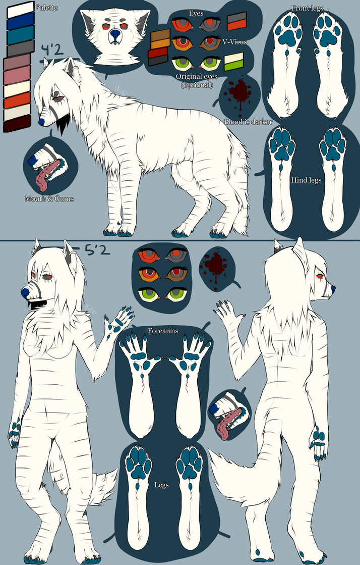 Denique Reference Sheet JUNE 2015 by fallingblood
