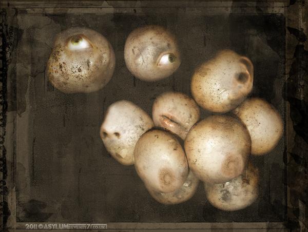 Mrs PotatoHead by ASYLUMSEVENTY7
