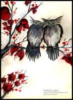 owls in mood by mrmohiuddin