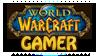 World Of Warcraft Gamer