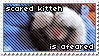 LOLcat Stamp 4 by Foxxie-Chan