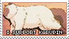 I Support Karupin by Foxxie-Chan