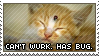 LOLcat Stamp 12