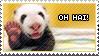 LOLcat Stamp 13 by Foxxie-Chan