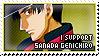 I Support Sanada