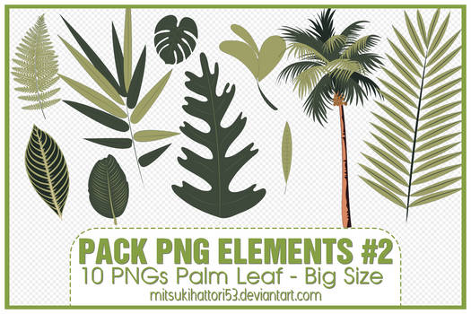 Pack PNG Elements #2: 10 PNGs Palm Leaf