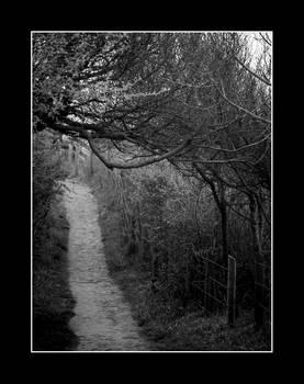 Along the Beaten Path
