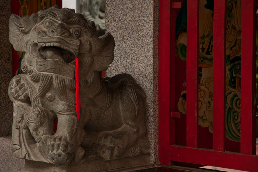 Lion guard by REcreates