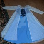 Custom Costume/Cosplay Elsa
