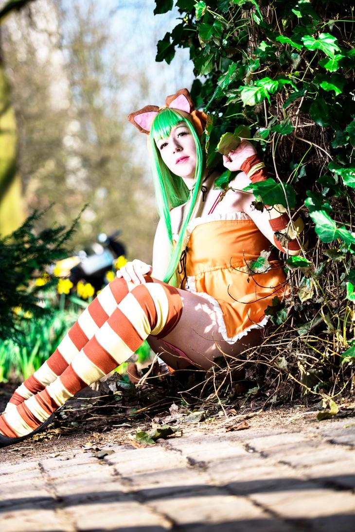 C.C Cheshire Cat Code Geass  Nunally in Wonderland by Shihnasan