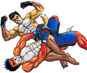 Fox duel 2 - color