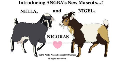 NELLA AND NIGEL DEBUT v1 crop
