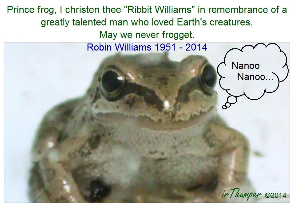 Ribbit Williams In Memory of Robin Williams by IrThumper