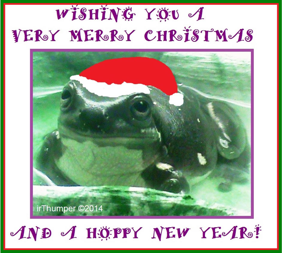 Froggy Merry Christmas-Hoppy New Year 2014 by IrThumper