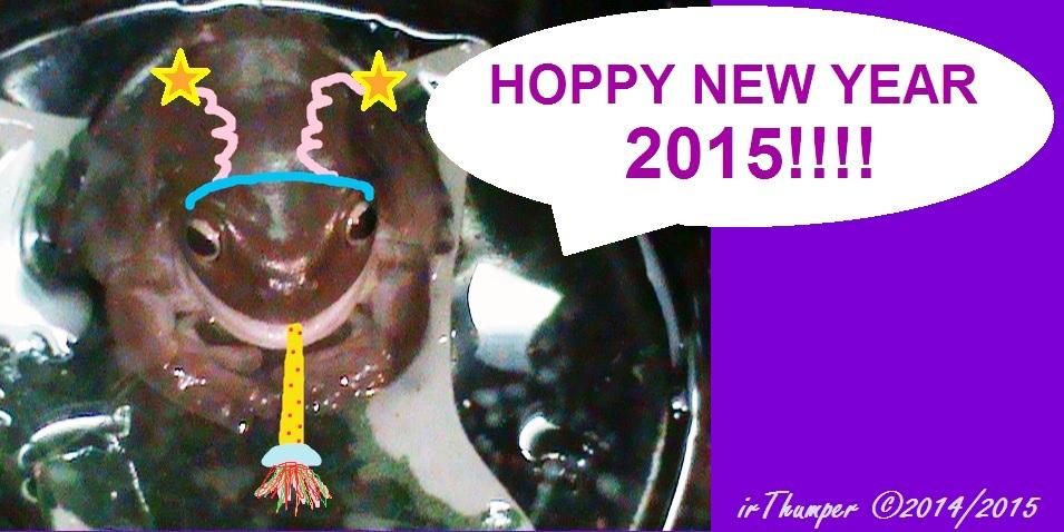 Hoppy New Year 2015!!!! by IrThumper