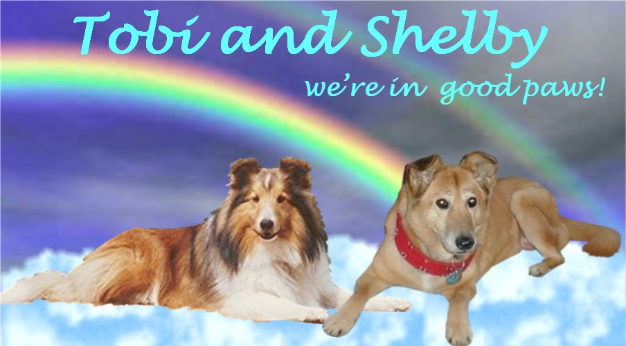 Tobi and Shelby Tribute by IrThumper