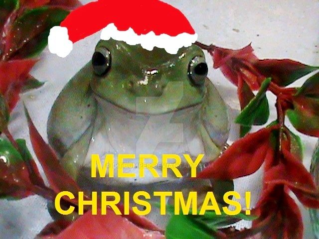 Christmas Lucy 2015 White's Tree Frog by IrThumper